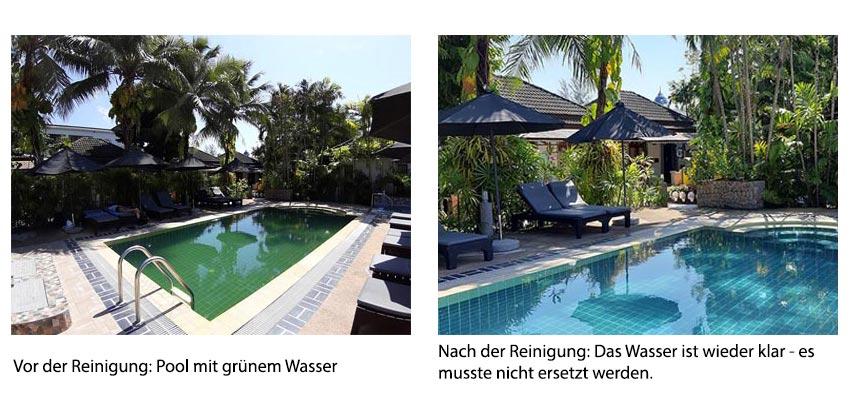 Vorher-nachher-Vergleich: Swimmingpool mit- grünem und klarem Wasser
