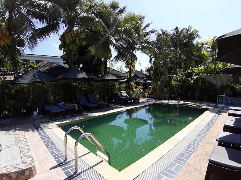 grünes poolwasser, schwimmbecken reinigen