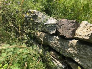 trockenmauer steinhaufen insekten garten